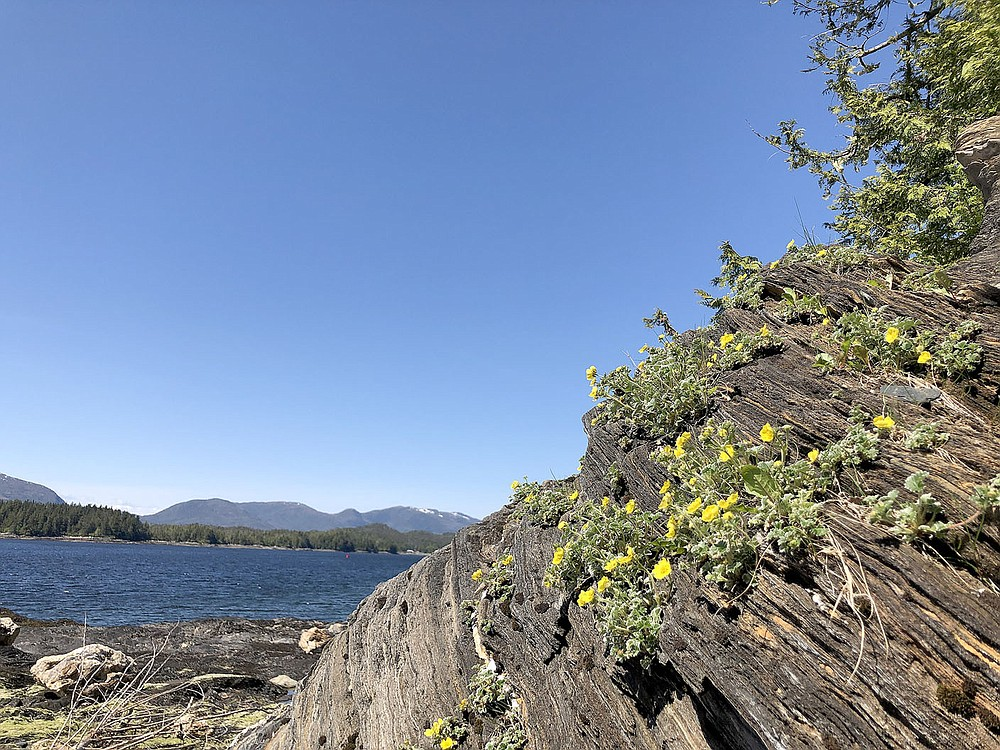 This view shows slate rocks, blue sky and the ocean at Rotary Park, aka Bugges (pronounced Buggie) Beach.