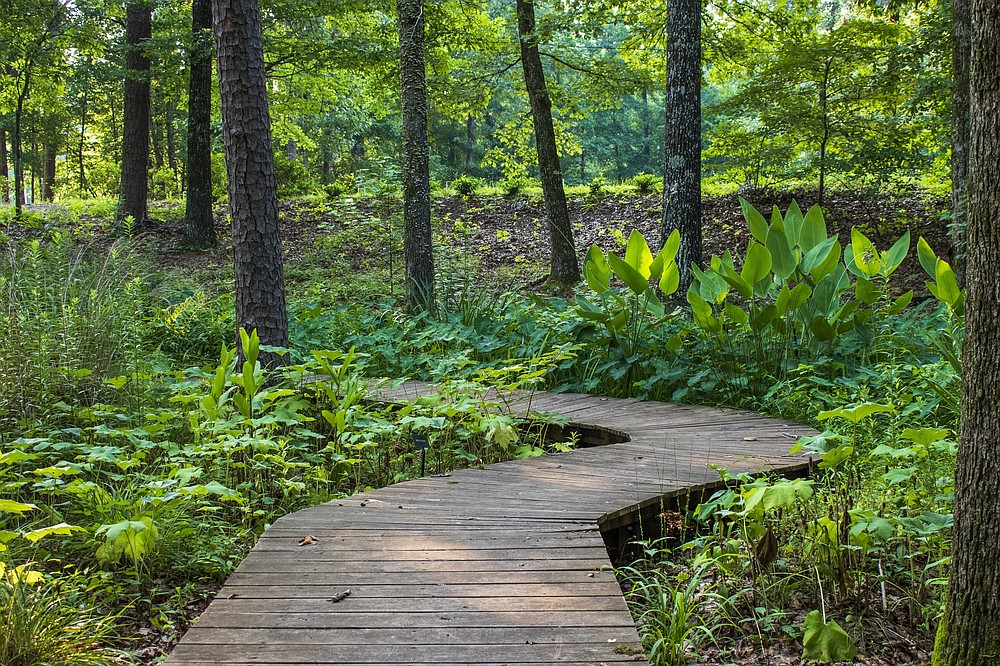 A path through the Asian Woodland Garden at Wildwood Park invites visitors to a leisurely stroll. (Arkansas Democrat-Gazette/Cary Jenkins)