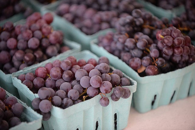 NWA Democrat-Gazette/ANDY SHUPE Grapes in containers sit Friday, Aug. 9, 2019, ready for sale during the 121st Tontitown Grape Festival in Tontitown. The festival, which features crafts vendors, chicken and spaghetti dinners and a midway, continues through today.
