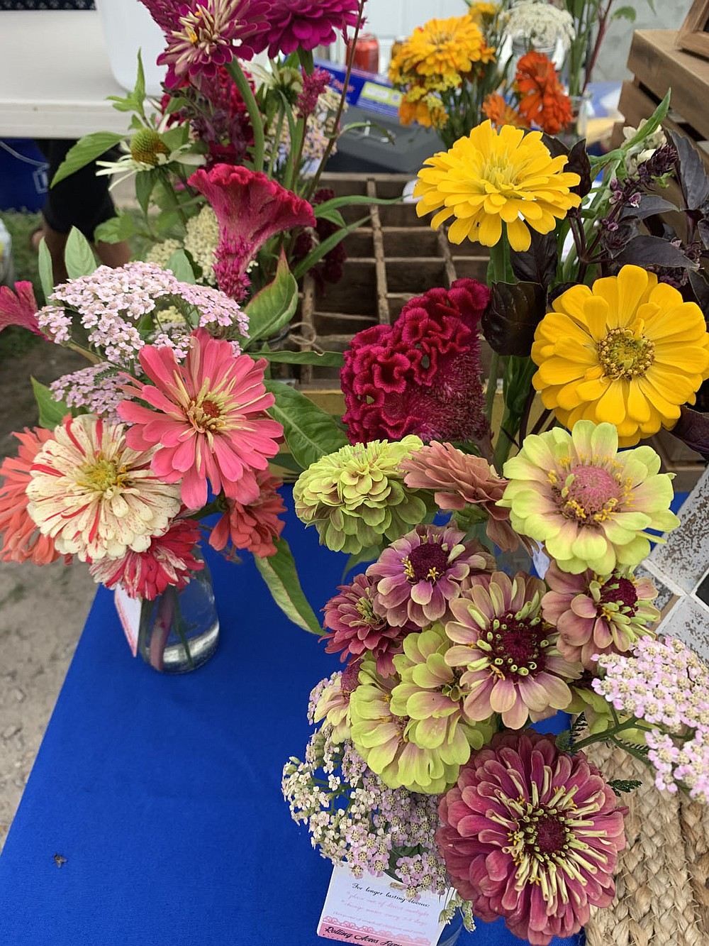 SALLY CARROLL/SPECIAL TO MCDONALD COUNTY PRESS Spring rains have helped these flowers flourish. Jesseca Freese of Rolling Acres Farm offers these beauties every Saturday at Mountain Happenings at Sims Corner.
