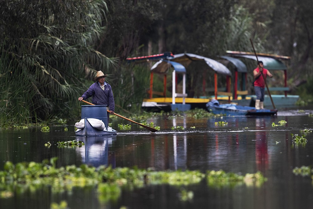 """A farmer uses a pole to move his canoe to his floating farm known as """"chinampa,"""" in Xochimilco, Mexico City, Thursday, Aug. 12, 2021, as Mexico City prepares for the 500th anniversary of the fall of the Aztec capital of Tenochtitlan. The canals and floating gardens of Xochimilco are the last remnants of a vast water transport system built by the Aztecs to serve their capital of Tenochtitlán. (AP Photo /Marco Ugarte)"""