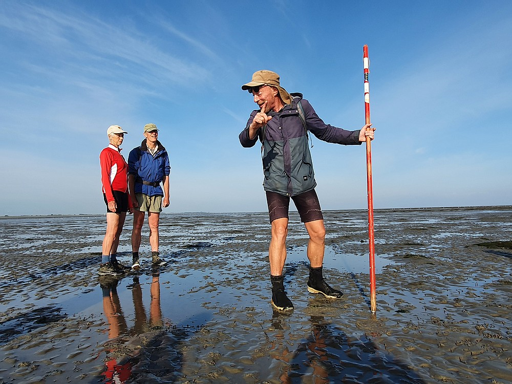 Naturalist Harm Jan Wilbrink offers daily tours over the mud flats between Paesens and Moddergat. (Courtesy of Selina Kok)