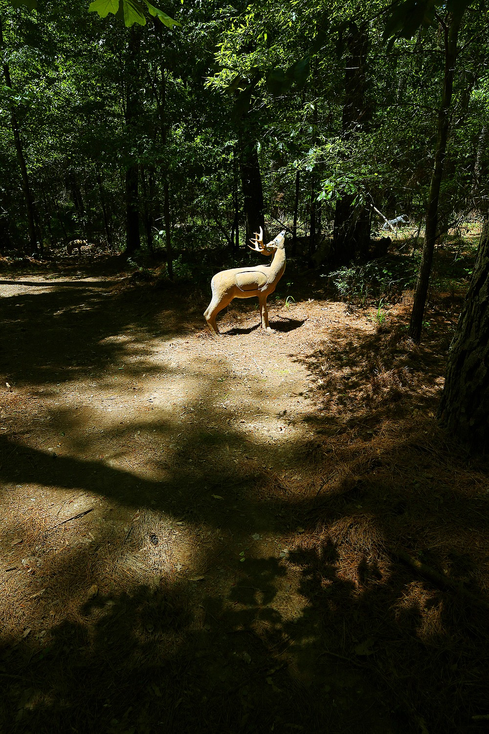 Those who enjoy shooting their bow might find the 3-D archery range at the Potlatch Conservation Education Center at Cook's Lake of interest. - Photo by Corbet Deary of The Sentinel-Record