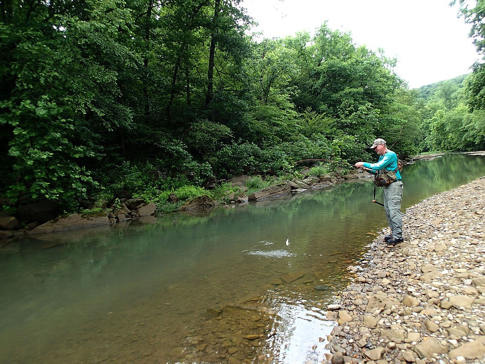 Small water produced good fishing for Pat Bodishbaugh in July 2021 on the upstream reaches of the Kings River. Sunfish and smallmouth bass were eager to bite on his fishing afternoon. (NWA Democrat-Gazette/Flip Putthoff)