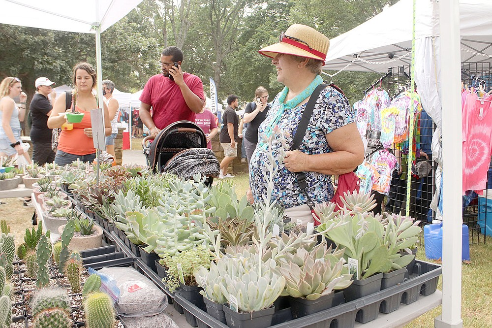 Irene Medynsky, who recently moved from Chicago, Ill., to Springdale, looks over succulents at this booth at the Clothesline Fair on Saturday. The booth, called Papercrete Potter, is from Highlandville, Mo. The vendor also offers flower pots made from pulp out of recycled newspapers.