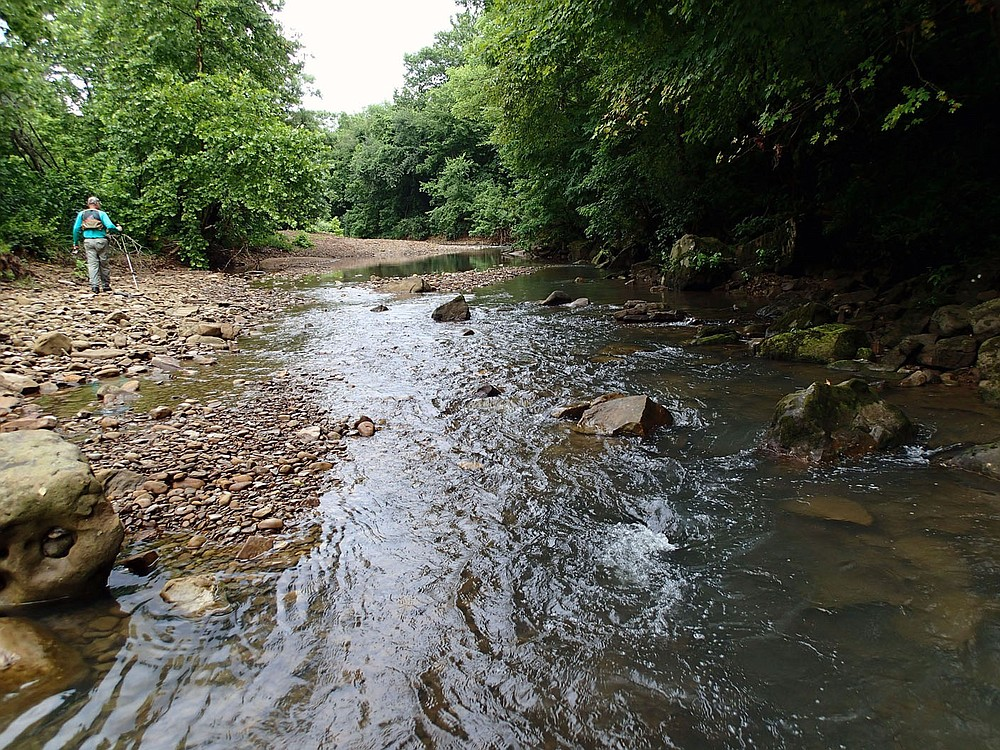 Pat Bodishbaugh of Fayetteville hikes to another fishing spot July 10 2021 along the Kings River. Low water during summer makes for ideal wade fishing on Ozark streams. On this trip Bodishbaugh rarely got into water more than ankle deep, mainly walking the shoreline and covering about one-half mile of the stream. (NWA Democrat-Gazette/Flip Putthoff)