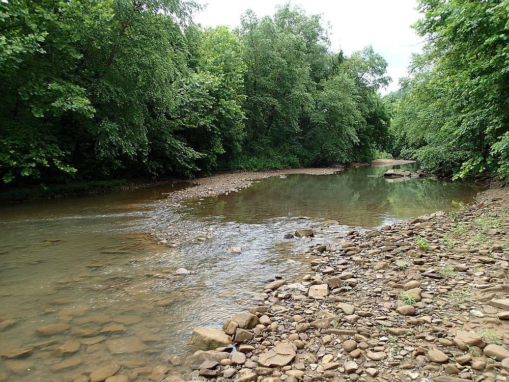 Summertime is fishing time for Bodishbaugh when the flow is low on Ozark streams. Low water on the Kings River in July 2021 was a welcome sight for Bodishbaugh when he arrived at the stream. (NWA Democrat-Gazette/Flip Putthoff)