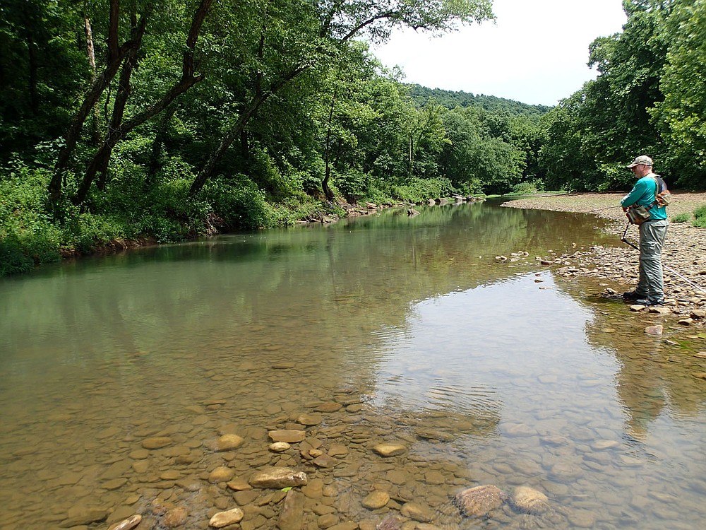 A pool may hold sunfish and smallmouth bass on the Kings River. Bodishbaugh works an oasis of water in July 2021 near Kingston. (NWA Democrat-Gazette/Flip Putthoff)