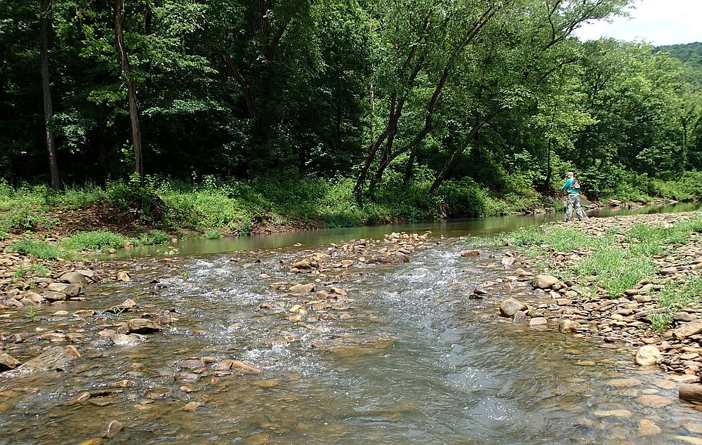 Pools upstream of shoals proved good fishing for Bodishbaugh in July 2021 on the Kings River. (NWA Democrat-Gazette/Flip Putthoff)