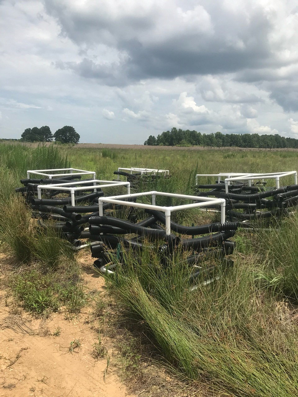 PVC Georgia cubes are used on the dried out bottom of Lake Monticello. (Special to The Commercial/Kris Nault, Arkansas Game and Fish Commission)