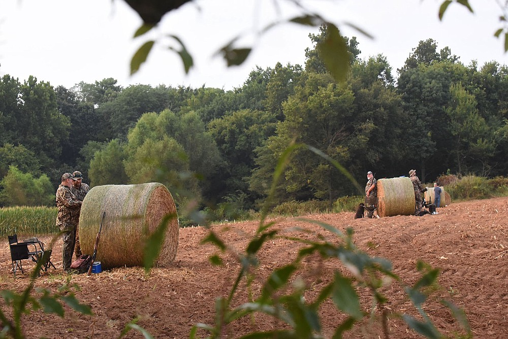 Shooting stations at the dove field      Sept. 4 2021    are marked with round bales of hay.  (NWA Democrat-Gazette/Flip Putthoff)