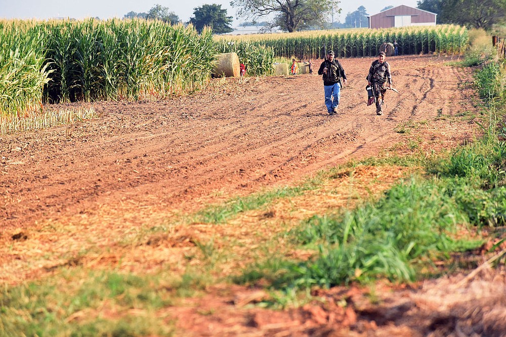 Hunters exit the permit-only dove field near Prairie Grove on Sept. 4, 2021, opening day of dove season.  (NWA Democrat-Gazette/Flip Putthoff)