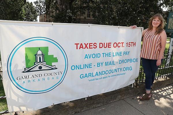Tax auction in Hot Springs raises $1.24M; draws 93 bidders