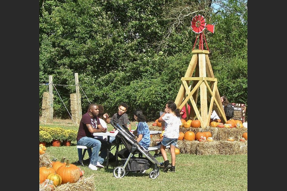 Hicks Family Farms has outdoor tables available for picnicking. (Special to the Democrat-Gazette/Marcia Schnedler)