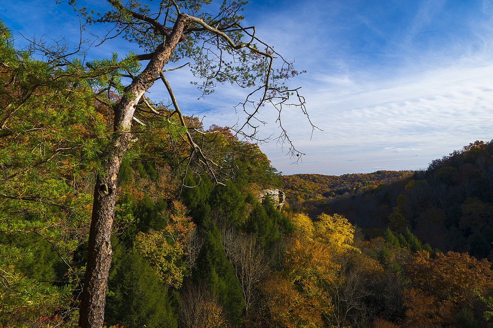The overlook at Conkle's Hollow in Hocking Hills State Park in Ohio. (Dreamstime/TNS)
